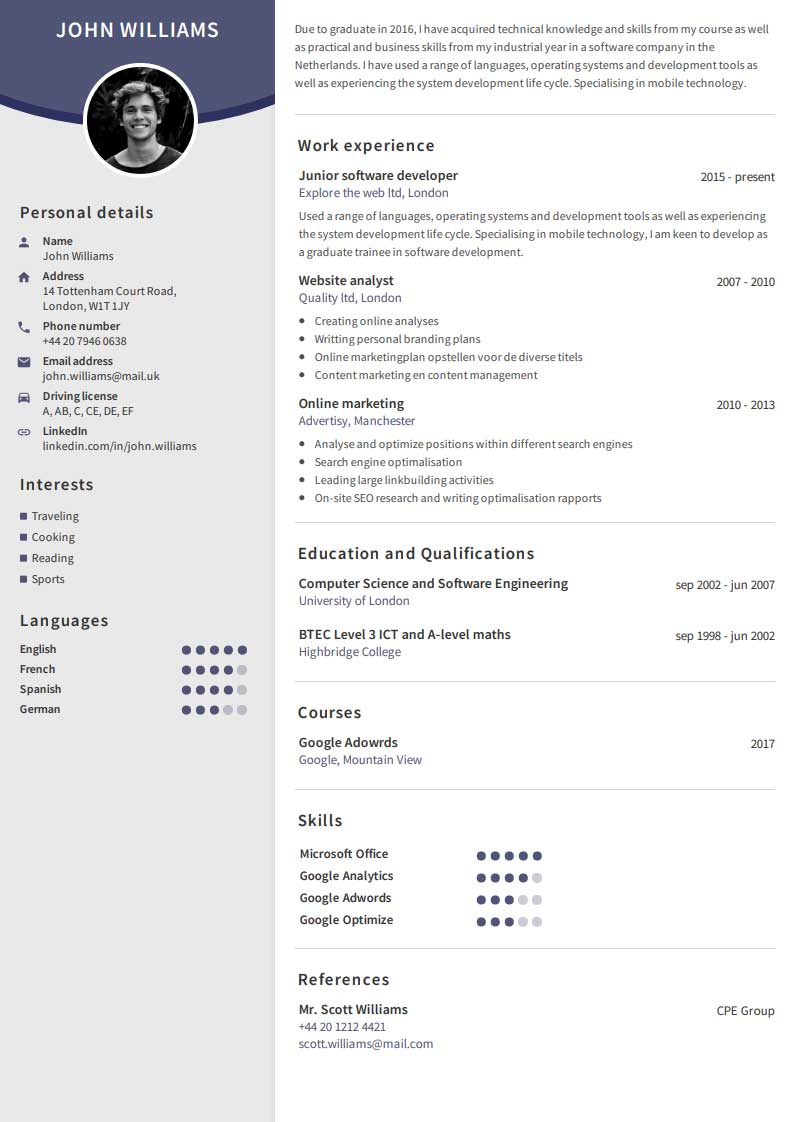 create a professional cv